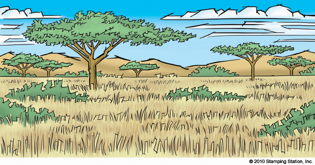 african savannah tree coloring pages - photo#35